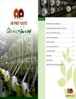 Báo cáo thường niên năm 2010 - Công ty Cổ phần Nhựa và Môi trường xanh An Phát