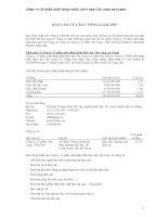 Báo cáo tài chính hợp nhất năm 2008 (đã kiểm toán) - Công ty cổ phần Xuất nhập khẩu Thủy sản Cửu Long An Giang