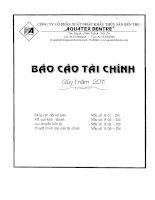 Báo cáo tài chính quý 1 năm 2011 - Công ty Cổ phần Xuất nhập khẩu Thủy sản Bến Tre