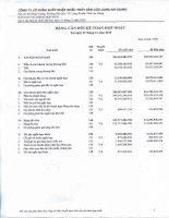 Báo cáo tài chính hợp nhất quý 4 năm 2010 - Công ty cổ phần Xuất nhập khẩu Thủy sản Cửu Long An Giang