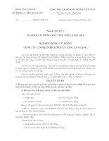 Nghị quyết Đại hội cổ đông thường niên năm 2010 - Công ty Cổ phần Bê tông ly tâm An Giang