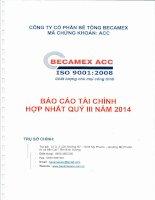 Báo cáo tài chính hợp nhất quý 3 năm 2014 - Công ty cổ phần Bê tông Becamex
