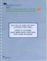Báo cáo tài chính quý 2 năm 2010 (đã kiểm toán) - Công ty cổ phần Xuất nhập khẩu Thủy sản Cửu Long An Giang