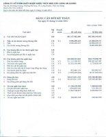 Báo cáo tài chính quý 4 năm 2012 - Công ty cổ phần Xuất nhập khẩu Thủy sản Cửu Long An Giang