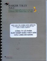 Báo cáo tài chính quý 2 năm 2011 (đã soát xét) - Công ty cổ phần Xuất nhập khẩu Thủy sản Cửu Long An Giang