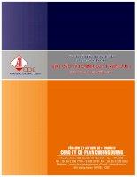 Báo cáo tài chính hợp nhất quý 1 năm 2011 - Công ty Cổ phần Chương Dương