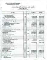 Báo cáo tài chính hợp nhất quý 4 năm 2010 - Công ty Cổ phần Nhựa Bình Minh