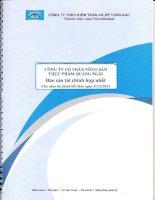 Báo cáo thường niên năm 2013 - CTCP Nông sản thực phẩm Quảng Ngãi