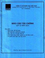 Báo cáo tài chính quý 2 năm 2015 - Công ty cổ phần CNG Việt Nam