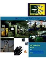 Báo cáo thường niên năm 2011 - Công ty Cổ phần Đầu tư BVG