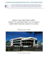 Báo cáo thường niên năm 2015 - Công ty cổ phần Đầu tư và Phát triển Đô thị Dầu khí Cửu Long