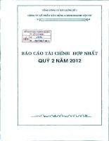 Báo cáo tài chính hợp nhất quý 2 năm 2012 - Công ty Cổ phần Xây dựng và Kinh doanh Vật tư
