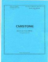 Báo cáo tài chính quý 2 năm 2015 - Công ty cổ phần CMISTONE Việt Nam