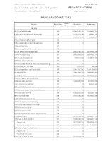 Báo cáo tài chính quý 4 năm 2010 - Công ty Cổ phần Đầu tư Xây dựng Bạch Đằng TMC