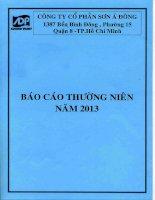 Báo cáo thường niên năm 2013 - Công ty Cổ phần Sơn Á Đông