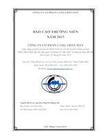 Báo cáo thường niên năm 2015 - CTCP Cảng Chân Mây