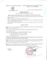 Nghị quyết Hội đồng Quản trị - Công ty Cổ phần Tập đoàn Sao Mai