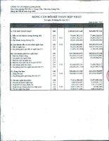 Báo cáo tài chính hợp nhất quý 2 năm 2011 - Công ty Cổ phần Đầu tư Alphanam