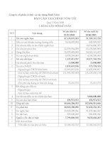 Báo cáo tài chính quý 2 năm 2008 - Công ty Cổ phần Cơ khí và Xây dựng Bình Triệu