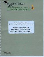 Báo cáo tài chính công ty mẹ năm 2013 (đã kiểm toán) - Công ty Cổ phần Chế biến và Xuất nhập khẩu Thuỷ sản Cà Mau