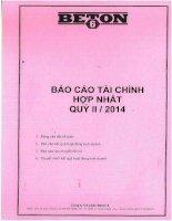 Báo cáo tài chính hợp nhất quý 2 năm 2014 - Công ty Cổ phần Beton 6