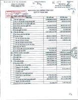 Báo cáo tài chính quý 4 năm 2009 - Công ty Cổ phần Nhiệt điện Bà Rịa