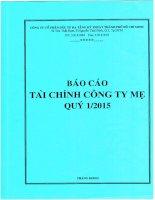 Báo cáo tài chính công ty mẹ quý 1 năm 2015 - Công ty cổ phần Đầu tư Hạ tầng Kỹ thuật T.P Hồ Chí Minh