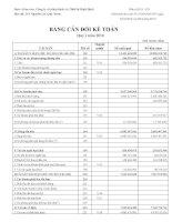 Báo cáo tài chính quý 1 năm 2010 - Công ty Cổ phần Sách và Thiết bị Bình Định