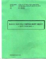 Báo cáo tài chính hợp nhất quý 1 năm 2012 - Công ty Cổ phần Nhựa Bình Minh