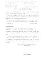 Báo cáo tài chính công ty mẹ quý 1 năm 2016 - Công ty Cổ phần Khoáng sản & Xi măng Cần Thơ