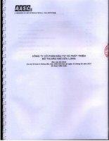 Báo cáo tài chính 9 tháng đầu năm 2010 - Công ty cổ phần Đầu tư và Phát triển Đô thị Dầu khí Cửu Long