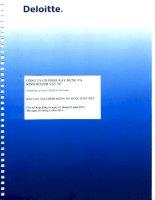 Báo cáo tài chính công ty mẹ quý 2 năm 2013 (đã soát xét) - Công ty Cổ phần Xây dựng và Kinh doanh Vật tư