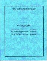Báo cáo tài chính quý 4 năm 2012 - Công ty cổ phần Khoáng sản Bình Định