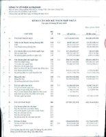 Báo cáo tài chính hợp nhất quý 3 năm 2010 - Công ty Cổ phần Đầu tư Alphanam