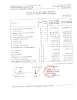 Báo cáo tài chính quý 3 năm 2009 - Công ty cổ phần Xi măng Vicem Bút Sơn