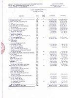 Báo cáo tài chính quý 1 năm 2013 - Công ty Cổ phần Chứng khoán Châu Á – Thái Bình Dương