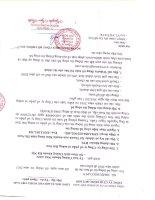Báo cáo tài chính năm 2010 (đã kiểm toán) - Công ty cổ phần Xi măng Vicem Bút Sơn