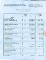 Báo cáo tài chính quý 2 năm 2012 - Công ty cổ phần Chứng khoán Ngân hàng Đầu tư và Phát triển Việt Nam