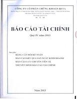 Báo cáo tài chính quý 4 năm 2013 - Công ty Cổ phần Chứng khoán BETA