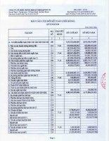 Báo cáo tài chính quý 2 năm 2010 - Công ty Cổ phần Chứng khoán Nông nghiệp và Phát triển Nông thôn