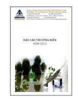 Báo cáo thường niên năm 2013 - Công ty Cổ phần Chế biến và Xuất nhập khẩu Thuỷ sản Cà Mau