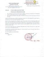 Báo cáo tài chính hợp nhất quý 2 năm 2014 (đã soát xét) - Công ty cổ phần Xây dựng và Nhân lực Việt Nam