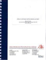 Báo cáo tài chính năm 2010 (đã kiểm toán) - Công ty Cổ phần Chứng khoán An Phát