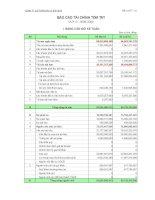 Báo cáo tài chính quý 3 năm 2009 - Công ty cổ phần Vicem Bao bì Bỉm Sơn