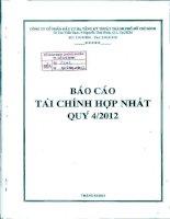Báo cáo tài chính hợp nhất quý 4 năm 2012 - Công ty cổ phần Đầu tư Hạ tầng Kỹ thuật T.P Hồ Chí Minh