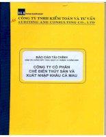 Báo cáo tài chính năm 2009 (đã kiểm toán) - Công ty Cổ phần Chế biến và Xuất nhập khẩu Thuỷ sản Cà Mau