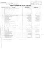 Báo cáo tài chính quý 2 năm 2007 - Công ty Cổ phần Viglacera Bá Hiến