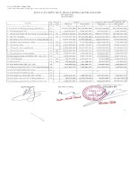 Báo cáo tài chính hợp nhất quý 1 năm 2013 - Công ty Cổ phần Nam Việt