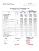 Báo cáo KQKD quý 4 năm 2012 - Công ty Cổ phần Chế biến và Xuất nhập khẩu Thuỷ sản Cà Mau