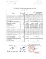 Báo cáo tài chính hợp nhất quý 3 năm 2010 - Công ty Cổ phần Bê tông Biên Hòa